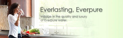 Everpure Drinking Water systems
