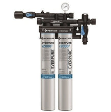 Load image into Gallery viewer, Everpure Insurice 2000(2) Twin Water Filter System EV9324-02 - Efilters.ca