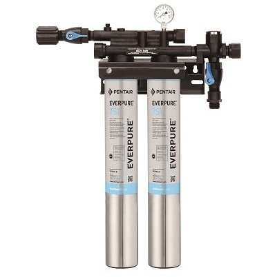 Everpure Insurice Twin 7SI Water Filter System EV9324-72 - Efilters.ca