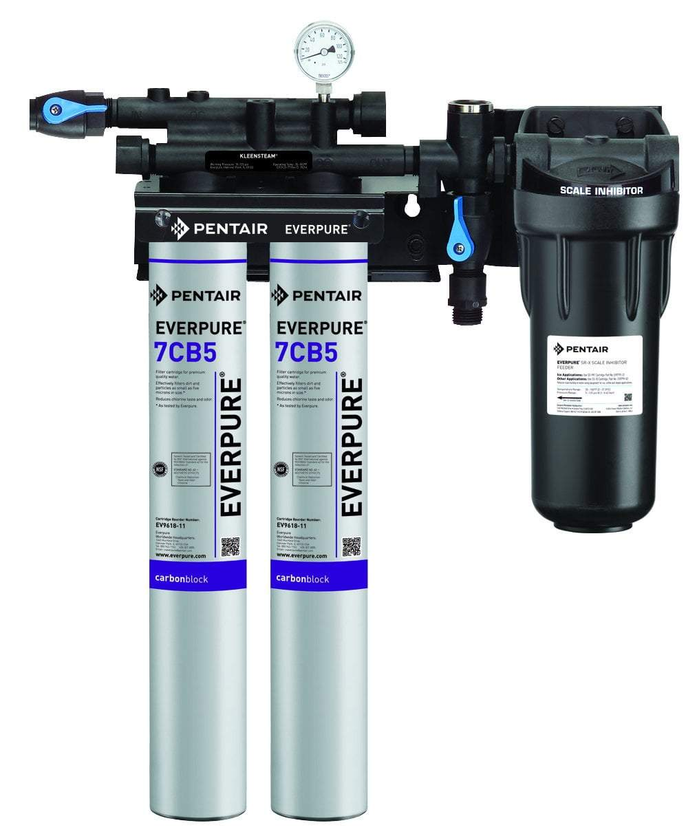 Everpure Kleensteam II Twin Water Filter System EV9797-22 - Efilters.ca