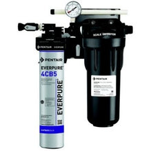Load image into Gallery viewer, Everpure Model CT Kleensteam Water Filter EV9797-50 - Efilters.ca
