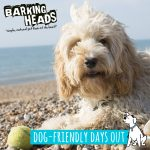The Barking Heads' guide to dog-friendly days out in the UK