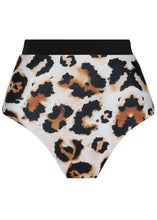 Load image into Gallery viewer, Dolce Bottoms Leopard