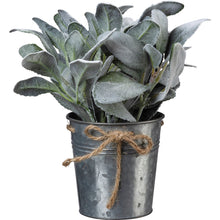 Load image into Gallery viewer, Lamb's Ear Bucket - Vintage Crossroads