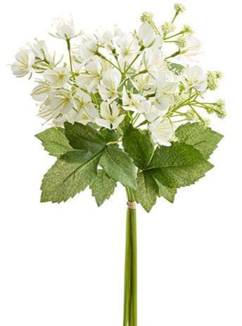 White Cleome Spider Bundle - Vintage Crossroads