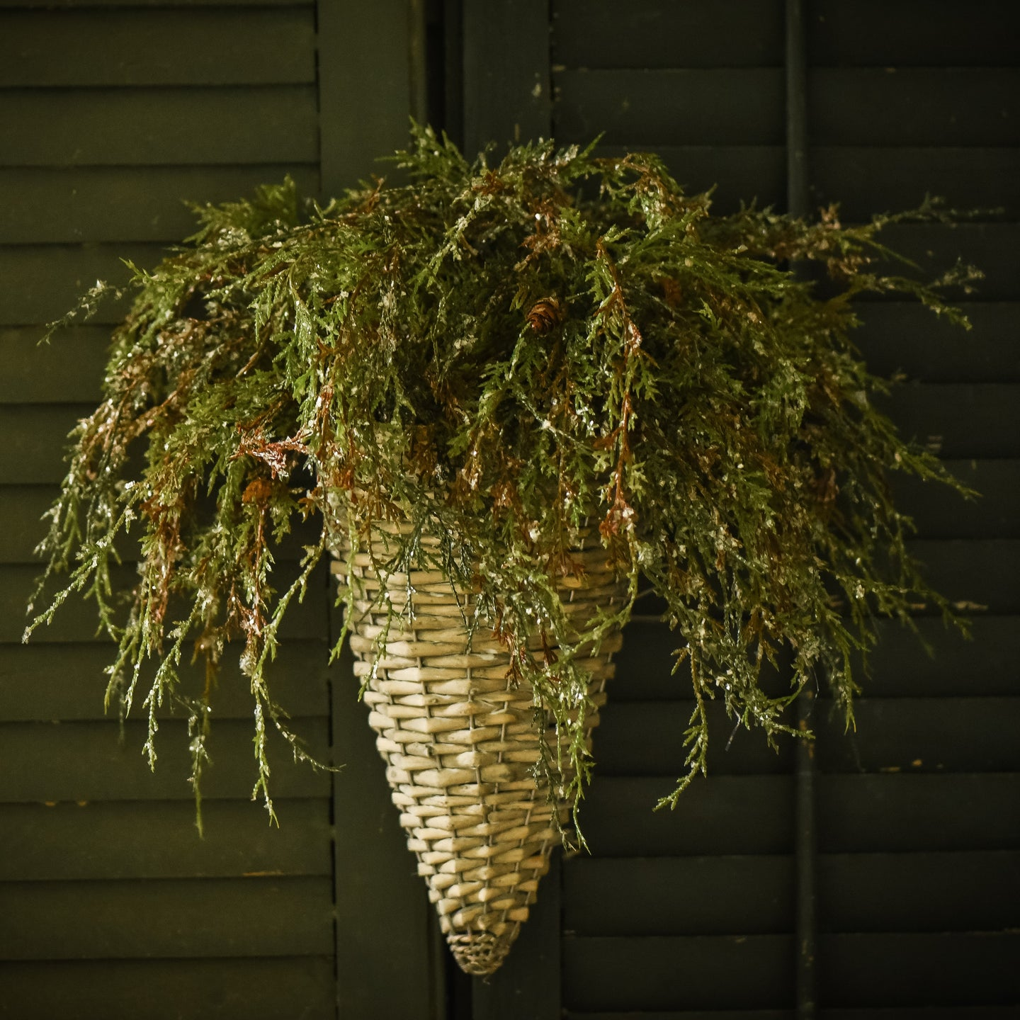 Wicker Sconce Wall Basket - Vintage Crossroads