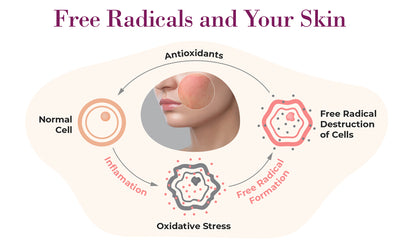 Free Radicals and Antioxidants: One of These is Not Like the Other