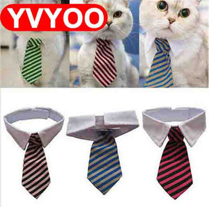 Collar Tie for Cats and Dogs