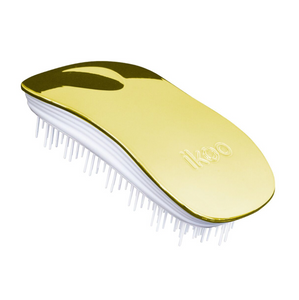 Ikoo Metallic Home Brushes