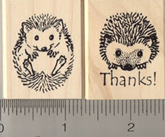 2 Piece Hedgehog Rubber Stamp Set, includes Thank You and Rolled up Hedgehog