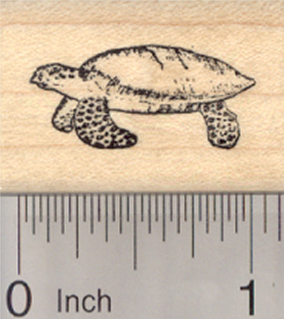 Sea Turtle Rubber Stamp, Green, Hawksbill, Small