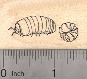 Pill Bug Rubber Stamp, roly poly, Potato Bug, Sow bug, woodlice