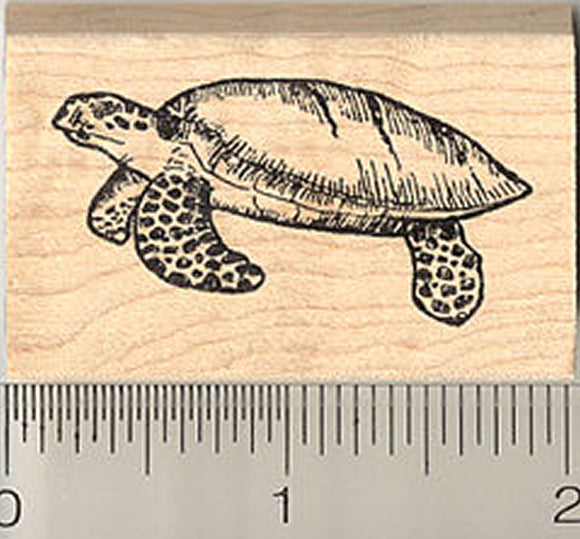 Sea Turtle Rubber Stamp, Green, Hawksbill, Black