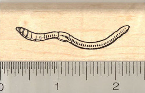 Earthworm Rubber Stamp
