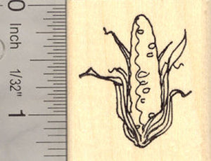 Corn on the Cob Rubber Stamp