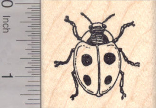 Ladybug Rubber Stamp, Lady Bird Beetle