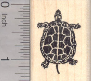 Small Turtle Rubber Stamp