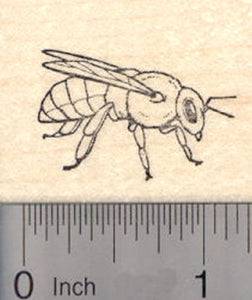 Honey Bee Rubber Stamp