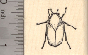 June Bug Rubber Stamp, Insect of Summer