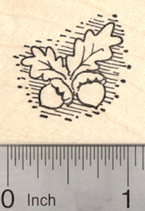Small Acorn Rubber Stamp, Thanksgiving