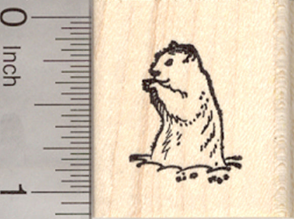 Small Groundhog Rubber Stamp, Ground Hog Day, Woodchuck, Marmot