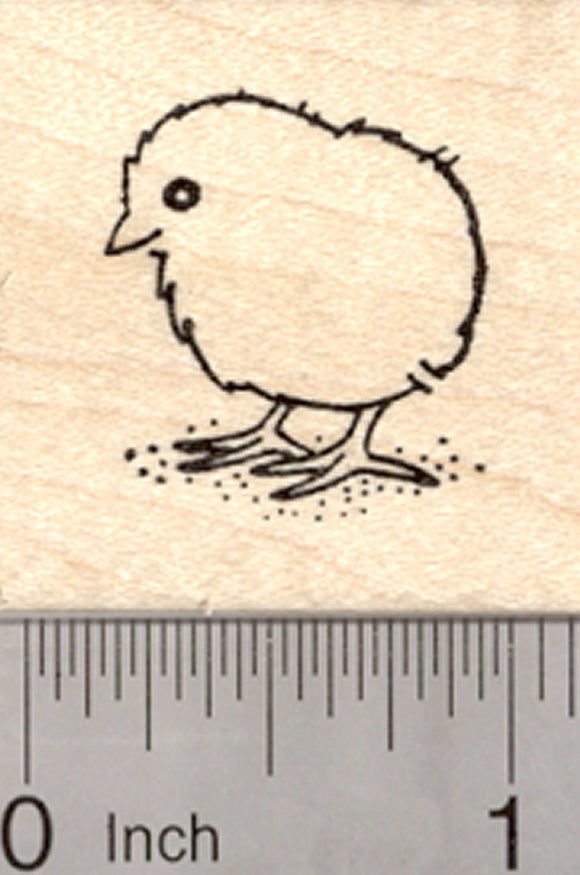 Easter Chick Rubber Stamp, Baby Bird