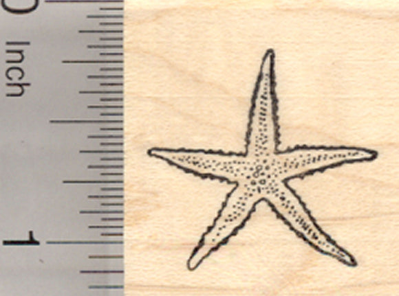 Starfish Rubber Stamp, Sea Star Fish, Small