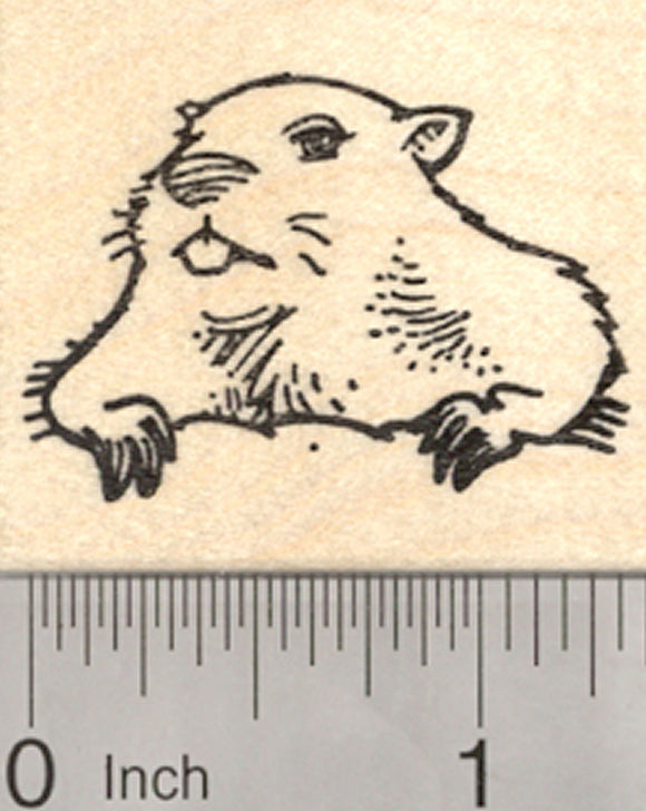 Groundhog Day Rubber Stamp, Marmot Emerging From Burrow