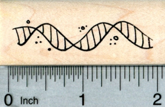 DNA Helix Rubber Stamp, Biological Science Series