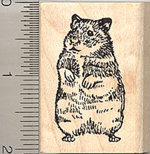 Hamster Rubber Stamp, Syrian Golden Breed, Hampster