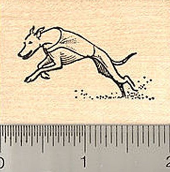 Small Greyhound Dog Rubber Stamp