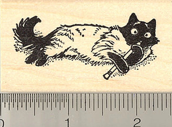 Cat with Pencil Rubber Stamp