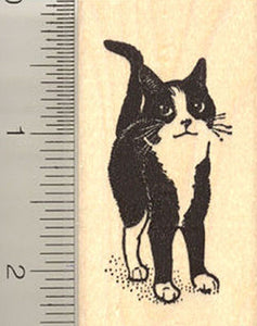Adorable Black and White Cat Rubber Stamp