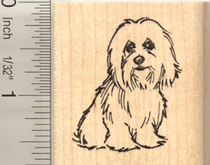 Coton de Tulear Dog Rubber Stamp