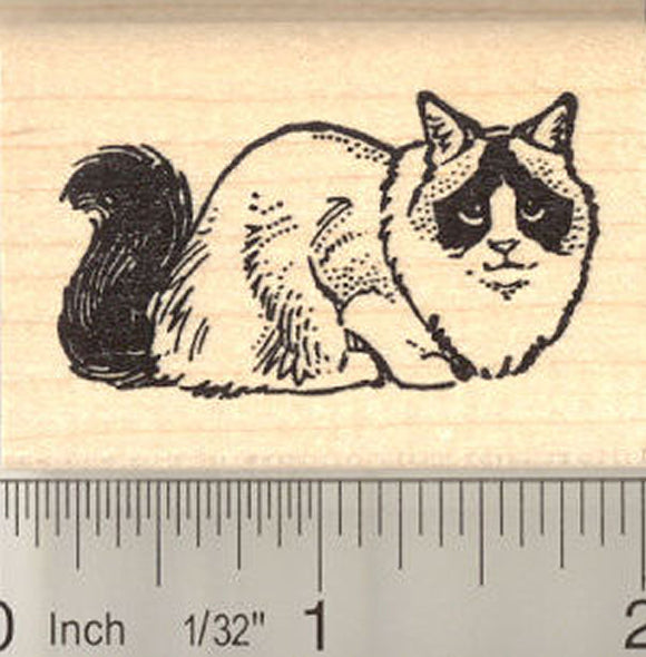 Ragdoll Cat Rubber Stamp