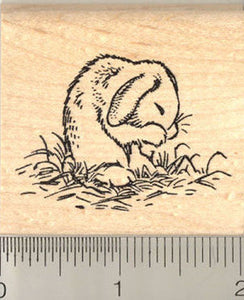 Grooming Bunny Rubber Stamp