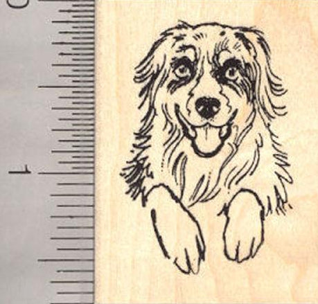 Australian Shepherd Dog Rubber Stamp