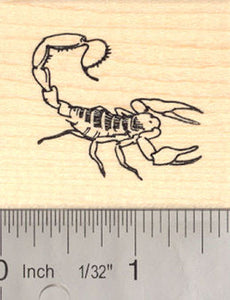 Scorpion Rubber Stamp