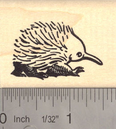 Short-beaked Echidna Rubber Stamp Spiny Anteater