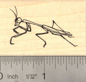 Praying Mantis Rubber Stamp Insect, Bug, Garden