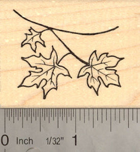 Fall Leaves Rubber Stamp