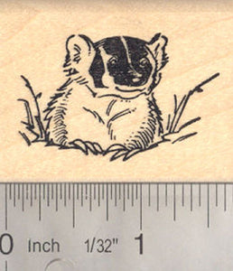 American Badger Rubber Stamp