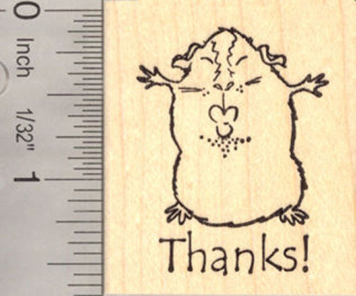 Thank you Guinea Pig Kiss Rubber Stamp