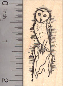 Barn Owl Rubber Stamp, AKA White owl, Silver Owl or Night Owl