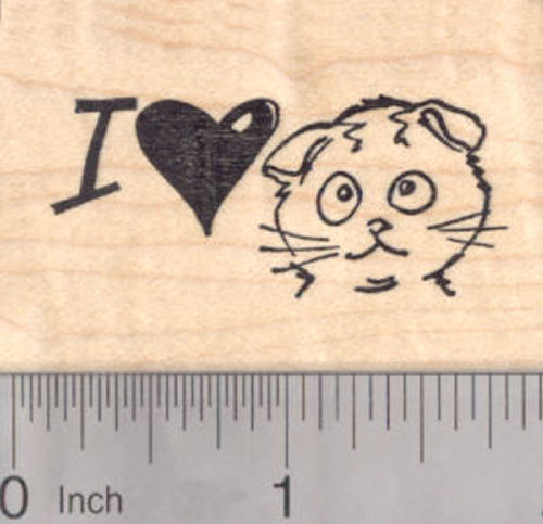 I Love my Scottish Fold Kitty Cat Rubber Stamp