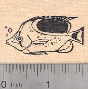Reef Fish Rubber Stamp