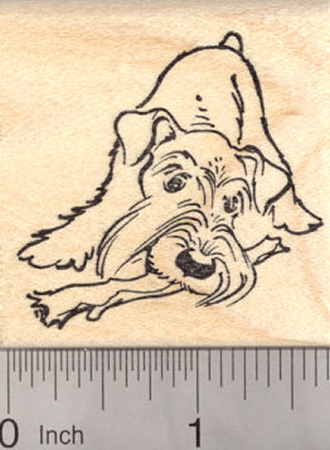 Schnauzer Dog with Natural Ears Rubber Stamp, with Chew Toy