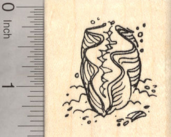 Giant Clam Rubber Stamp, Sea Mollusk, Native to Coral Reef