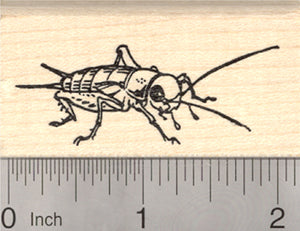 Cricket Rubber Stamp