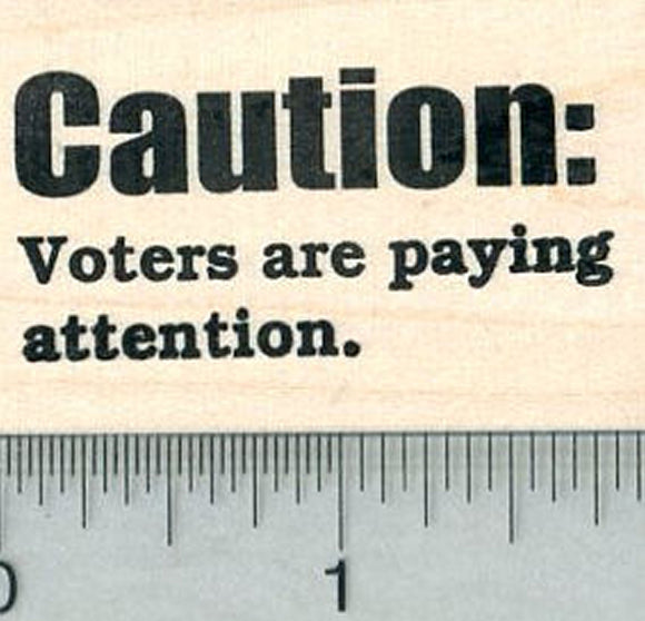 Political Rubber Stamp, Caution: Voters are Paying Attention